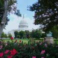 Day One in DC: Arlington Cemetery, the Library of Congress and the Capitol